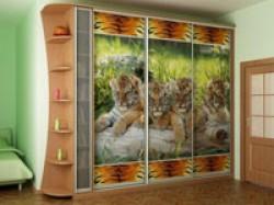 Дизайн дверей шкафов-купе